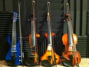 Violins L to R: 7-string, 5-string, 4-string, 4-string acoustic